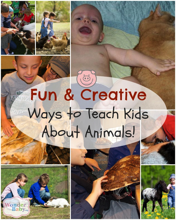 teaching your child about animals