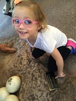 Cailee finds braille at the Phoenix Zoo