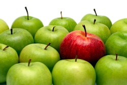 A red apples stands out against a group of green apples