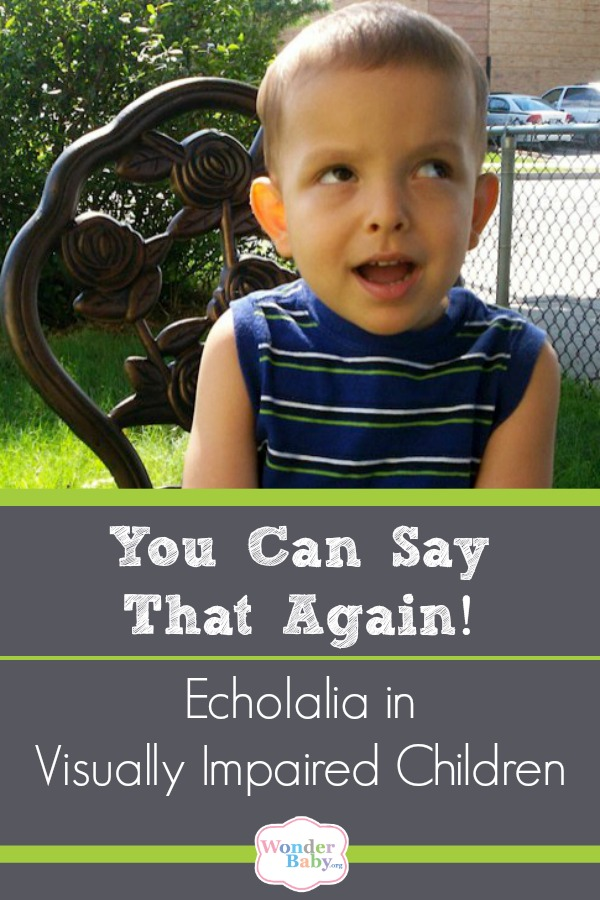 Echolalia in Visually Impaired Children