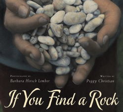 If You Find a Rock in print and braille