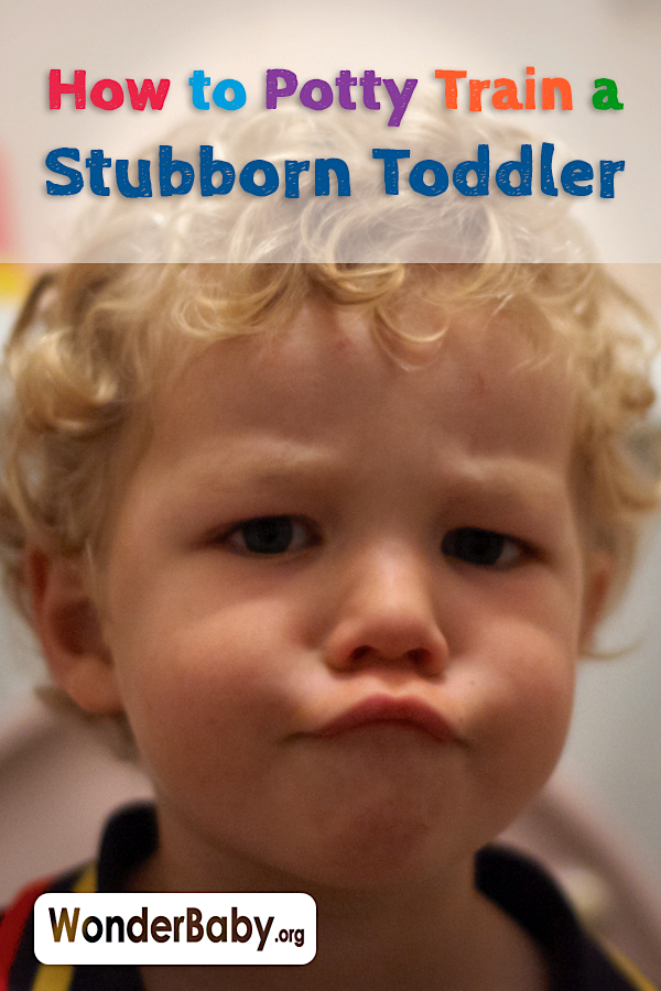 How to Potty Train a Stubborn Toddler