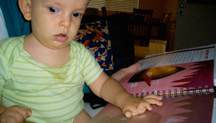 Our Favorite Tactile Books For Blind Kids Wonderbaby Org