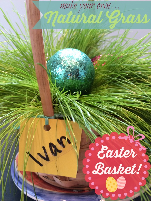Make your own natural grass Easter basket