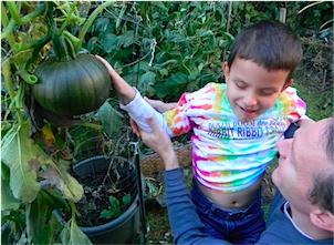 picking our pumpkin