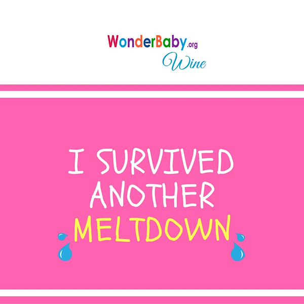I survived another meltdown