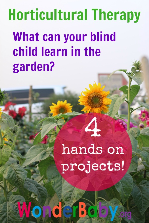Horticultural Therapy: What Can Your Blind Child Learn in the Garden?