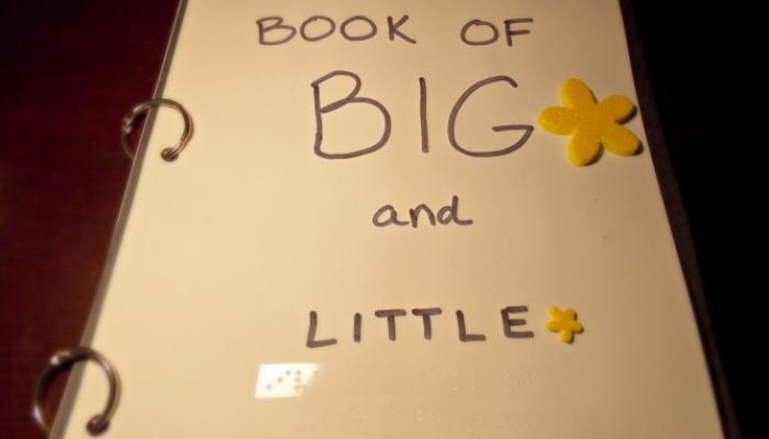 Make Your Own Big Amp Little Book Wonderbaby Org