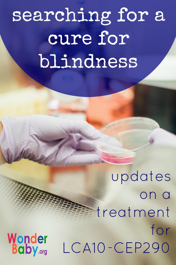 Searching for a cure for blindness: Updates on a treatment for LCA10-CEP290