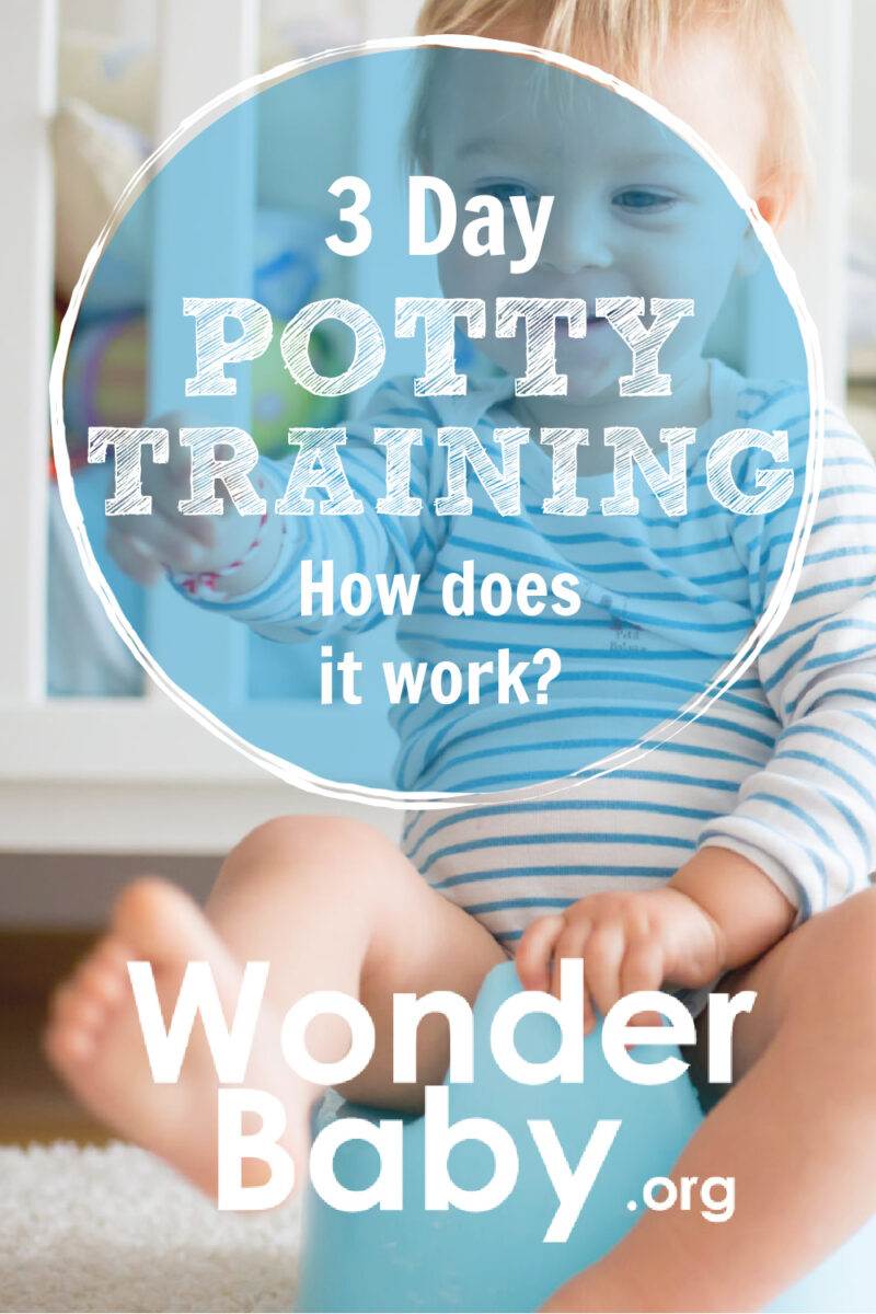 3 Day Potty Training: How Does it Work?